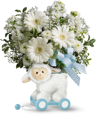 Teleflora\'s Sweet Little Lamb - Baby Blue